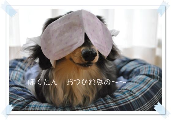 DSC_4918.jpg