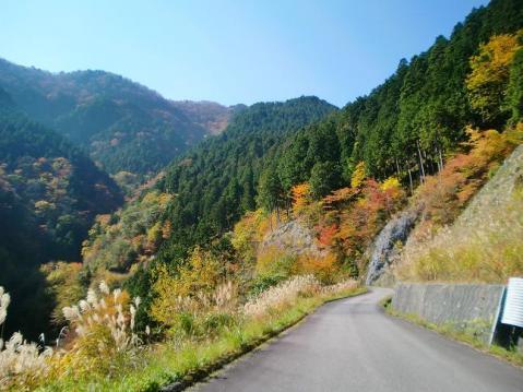20091031吉野大峰林道1025