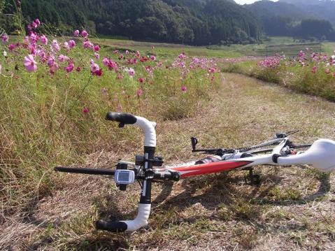 20111016天ダム柳生1845