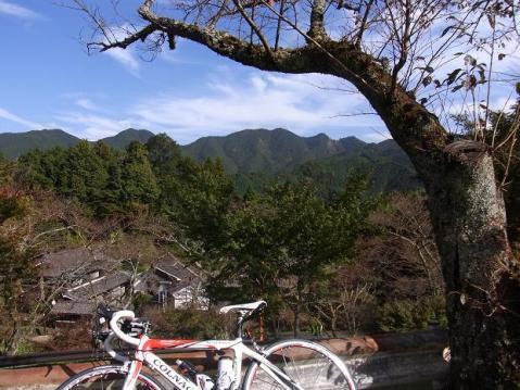 20111112多武峰1888