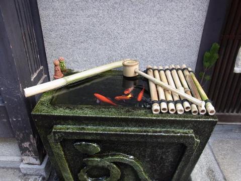 20120102 祇園八坂0030