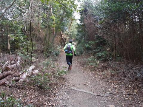 20120109京都一周トレイル東山0079