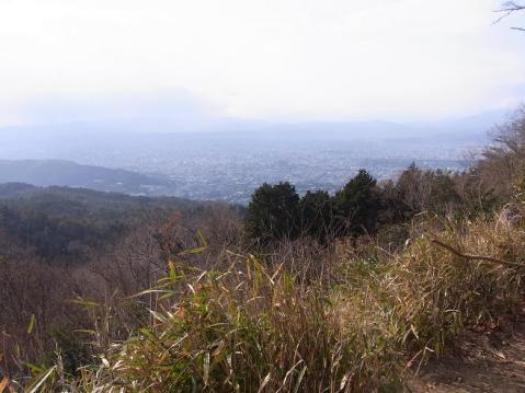 20120109京都一周トレイル東山0075