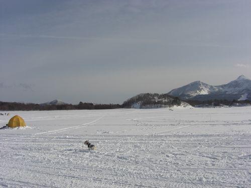 2010_0214画像0762