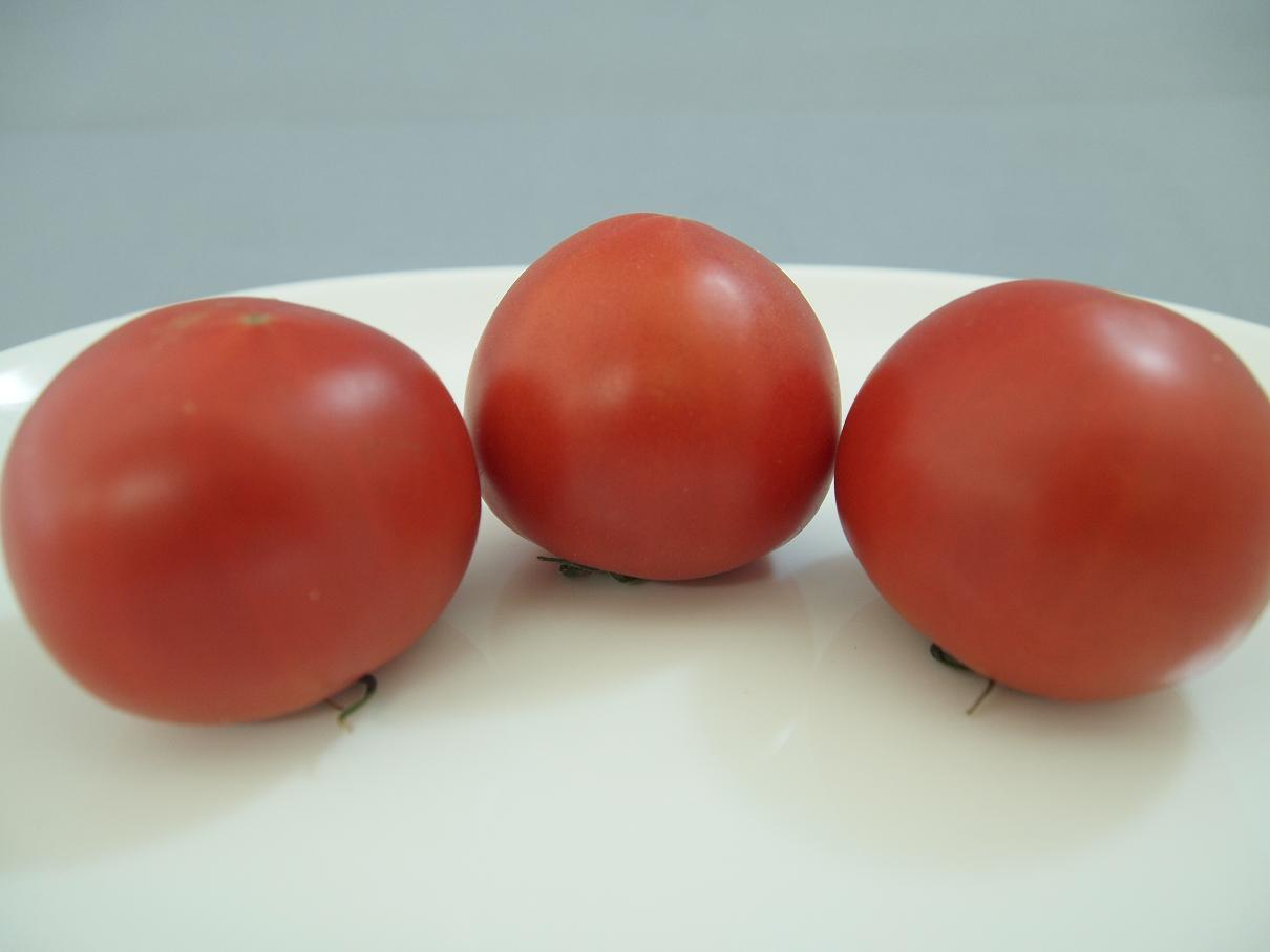 フルーツトマト 021