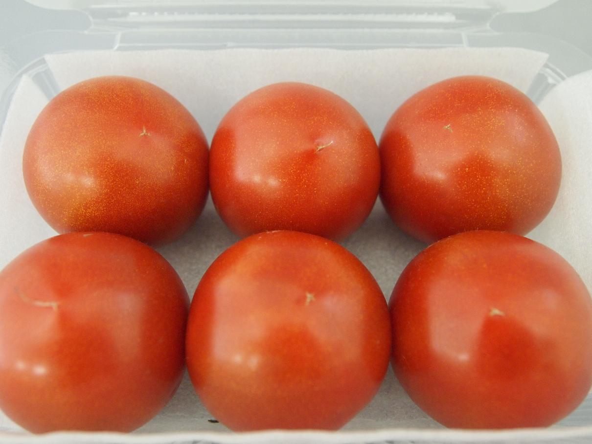 フルーツトマト 033