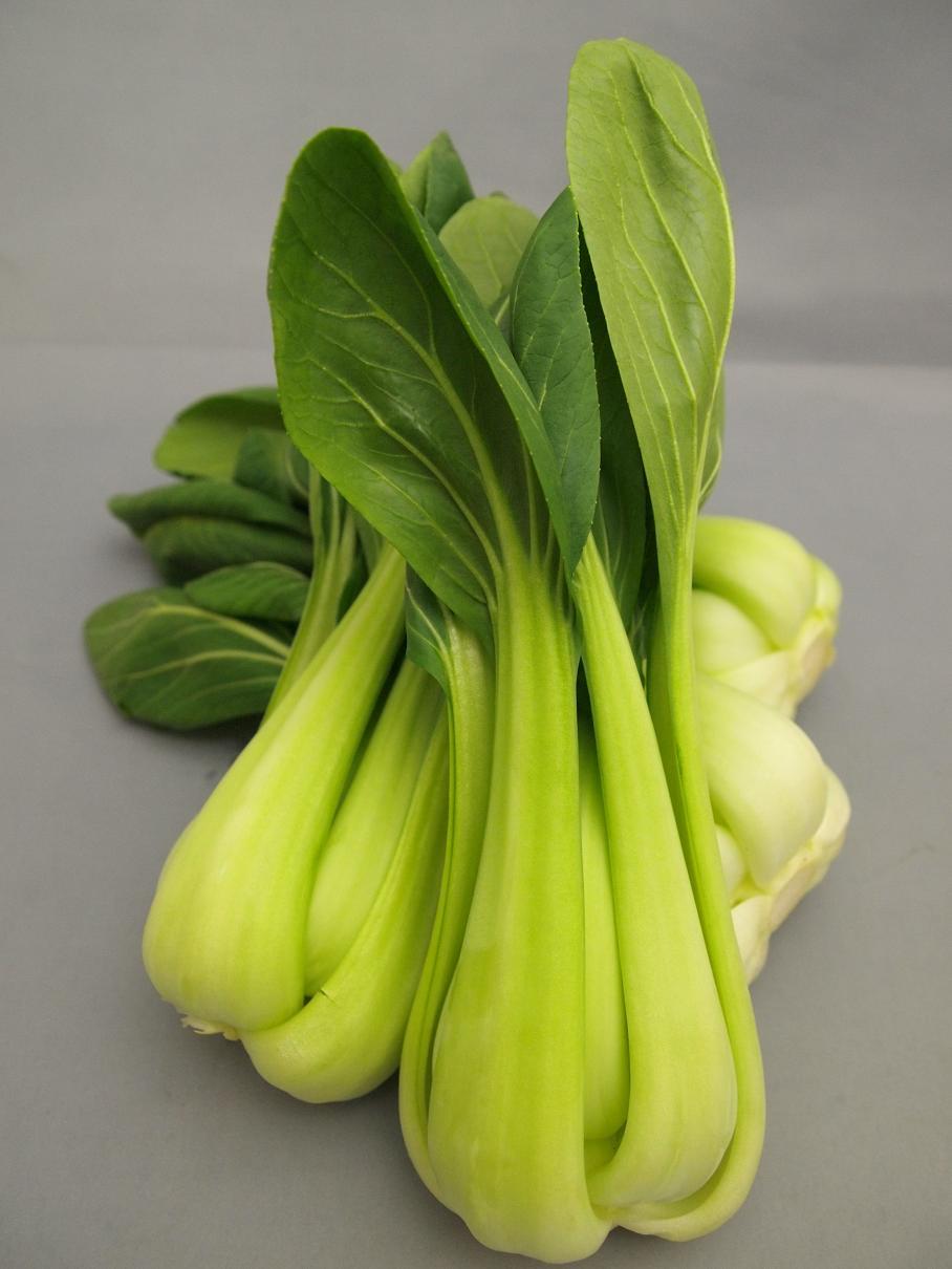 サラダちんげん菜 (3)