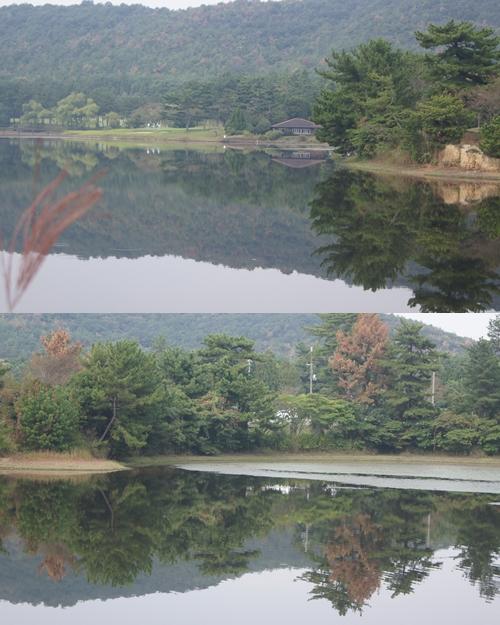 1_20111015223645.jpg