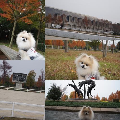 2_20111129130749.jpg