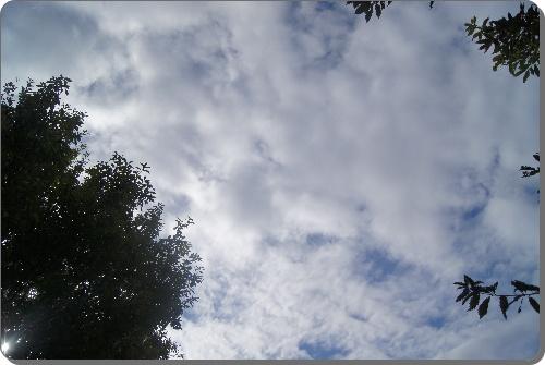 DSC04614.jpg