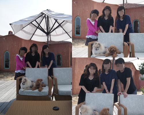 cats_20111013212902.jpg