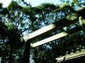 湯田神社08