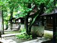 稲毛神社13