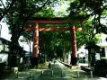 氷川神社(大宮・総本社)01