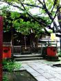 柳森神社10
