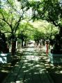 鷲宮神社03