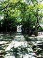 鷲宮神社18