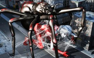 SpiderWeb(3)