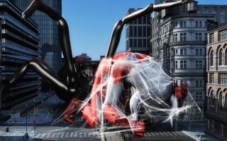 SpiderWeb(1)