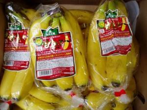 完熟王バナナ