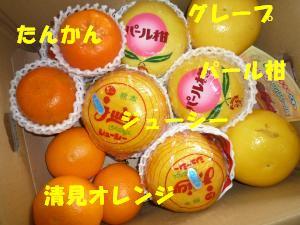 オレンジセット♪