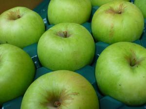 つがるりんご