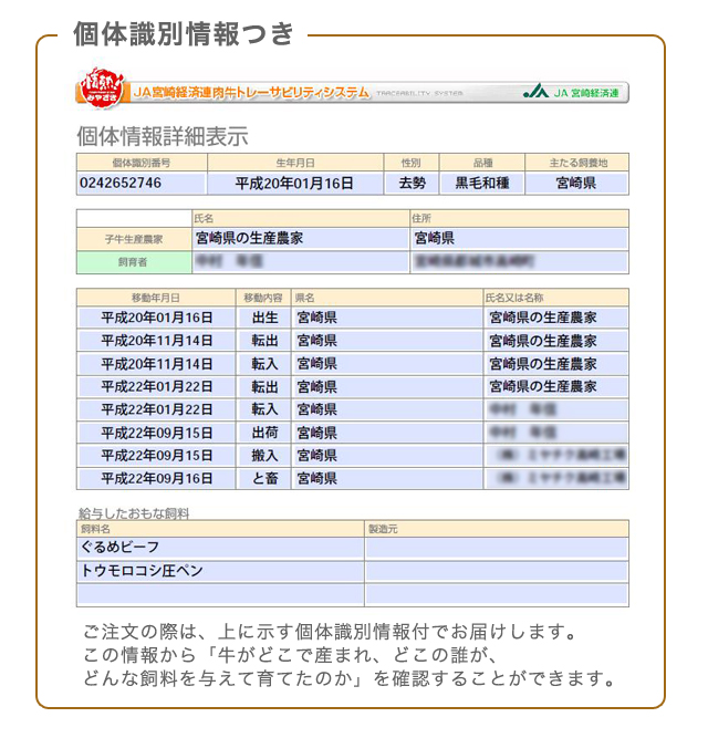 tokushu_11.jpg