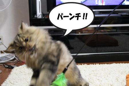 o( ̄ー ̄)○☆パンチ!