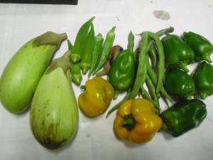 9-29収穫