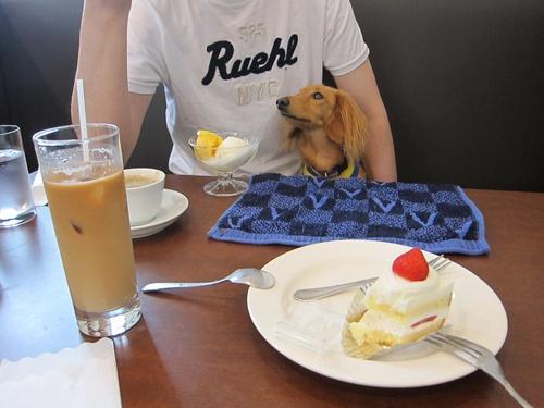 CAFEWINE2