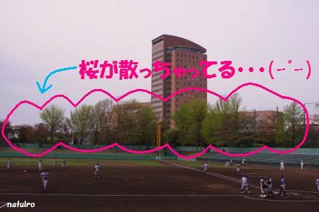 2013-04-10-1.jpg