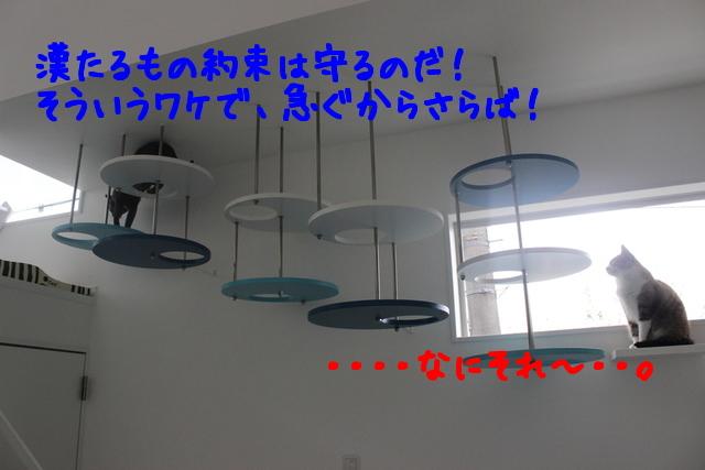 URMx_NF4Tc_eY_l1418971082_1418971200.jpg
