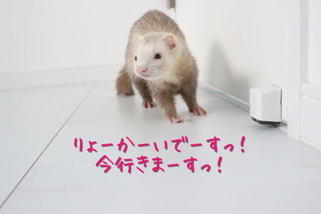 kako-PlCbu46kuIQZgqFg.jpg
