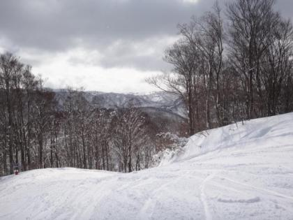 銀嶺会 今庄365スキー場 行