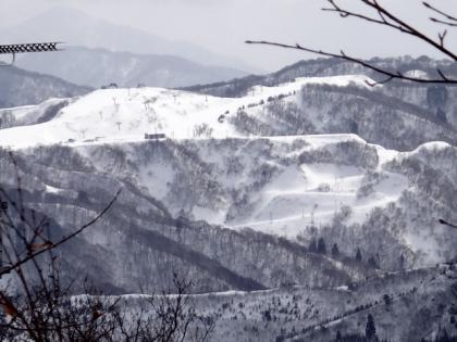 銀嶺会 今庄365スキー場にて