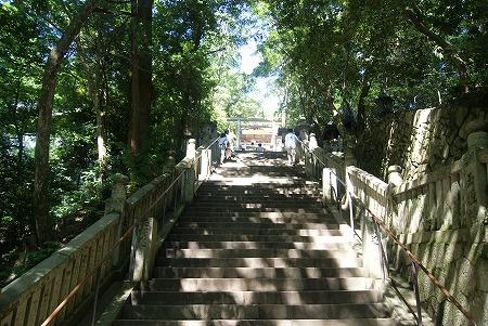 金比羅山 階段その2