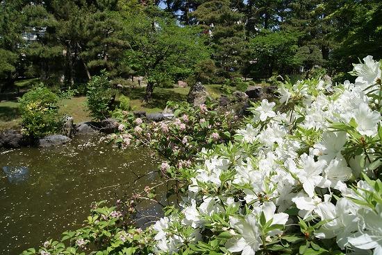 新潟観光11
