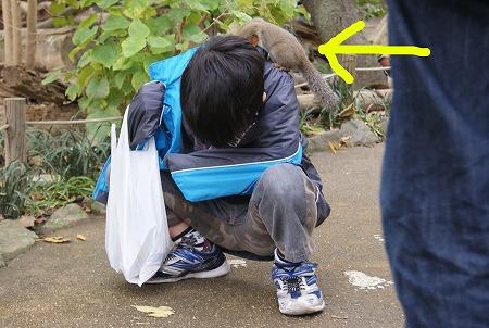 長野 動物園10