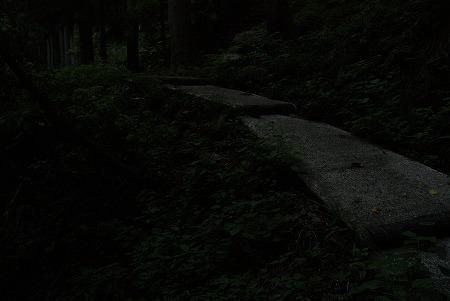 福井 暗い 山道