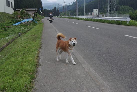 秋田県突入16