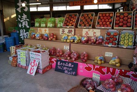 長野 りんご3