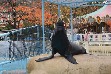 長野 動物園2