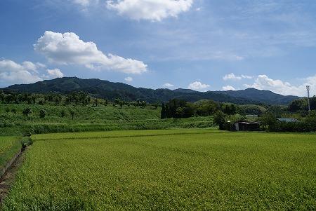 奈良 大自然