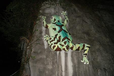 和歌山 謎のカエル