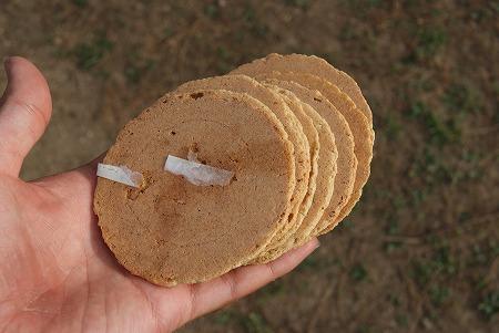 奈良 鹿煎餅