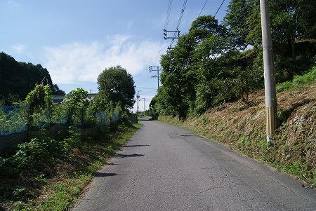 奈良 国道?