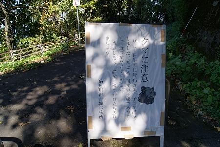 新潟 国道8号5