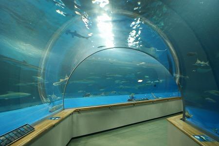 海底トンネル AQUAS