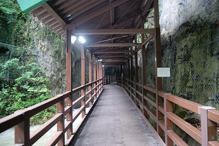 鍾乳洞 入り口 山口