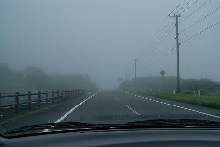 とある道その2 鹿児島